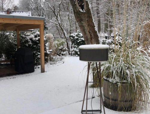 Kostbarkeit im Schnee